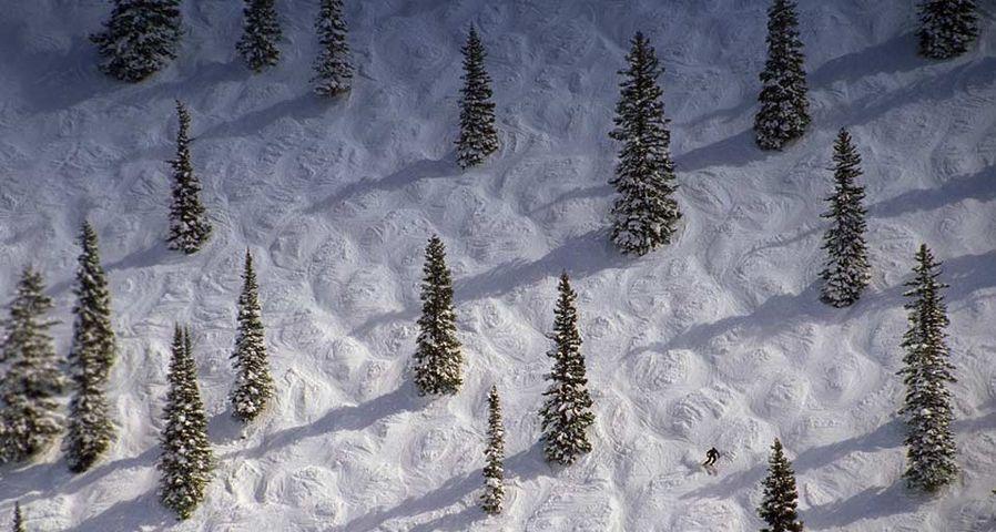 「アスペンのスキーヤー」アメリカ、コロラド州
