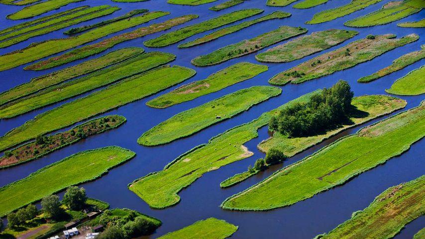 「イスプの干拓地」オランダ, 北ホラント州