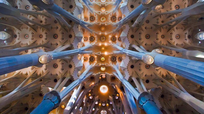 「サグラダ・ファミリアの天井」スペイン, バルセロナ