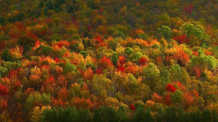 「ハドソン渓谷」アメリカ, ニューヨーク州