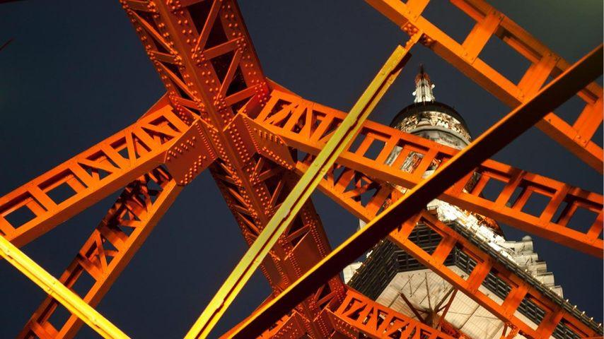 「東京タワー」東京, 芝公園