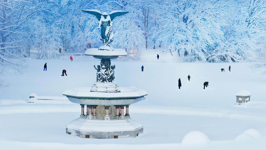 「雪の中のベセスダの噴水」米国ニューヨーク州, セントラルパーク