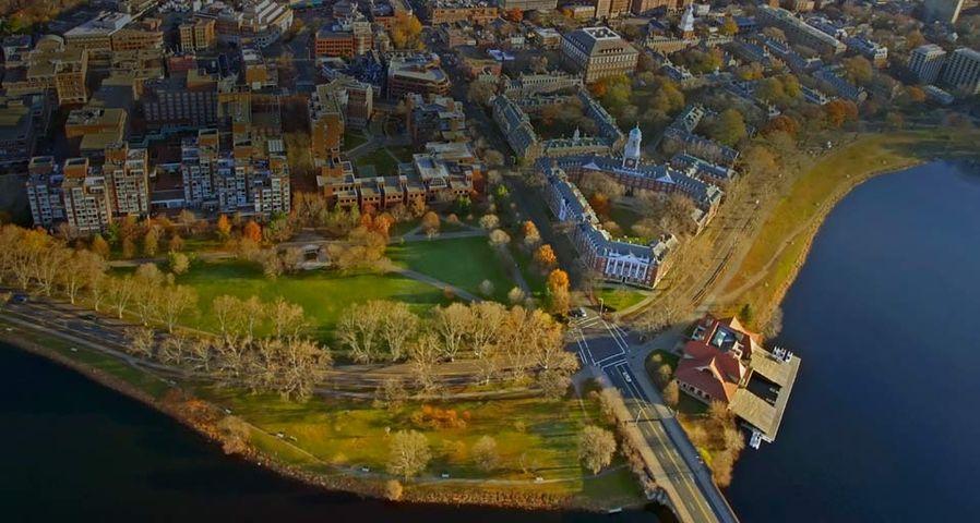 「ハーバード大学周辺」アメリカ, マサチューセッツ州, ケンブリッジ