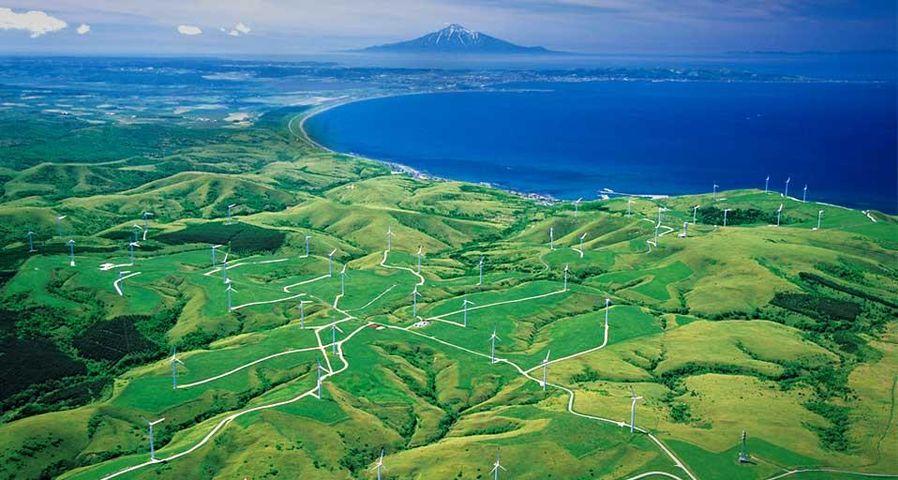 「風力発電所」北海道, 稚内市