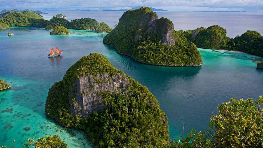 「ワヤッグ諸島」インドネシア, ラジャ・アンパット諸島