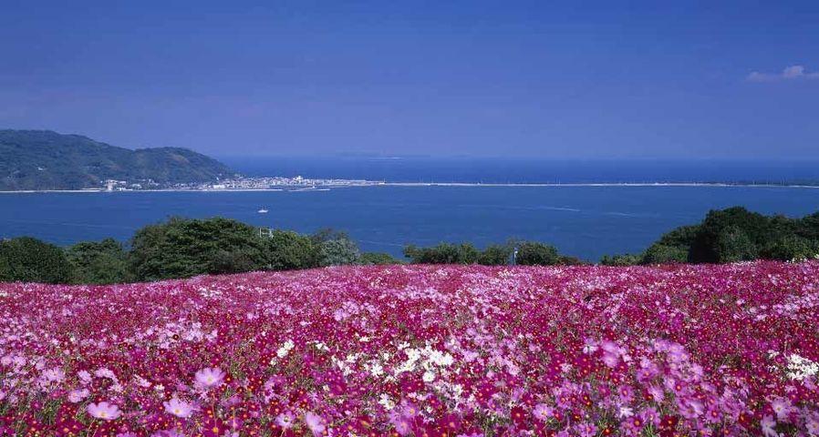 「のこのしまアイランドパーク」福岡, 能古島