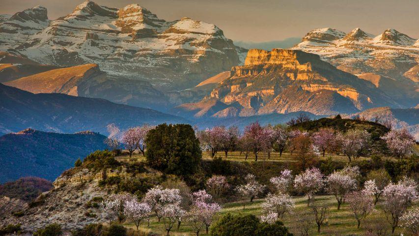 「アインサ=ソブラルベの春」スペイン