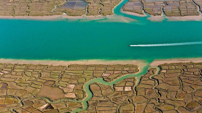「スードル川」フランス, シャラント=マリティーム県