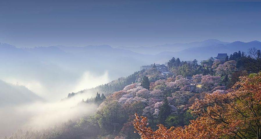 「吉野山」奈良
