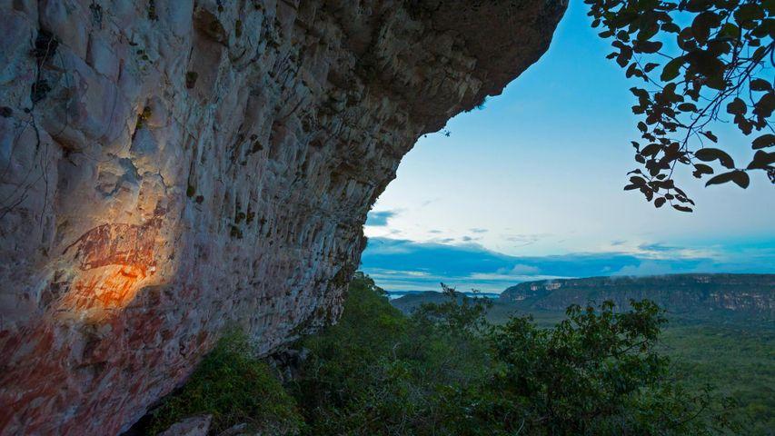 「ジャガーのマロカ」コロンビア, チリビケテ国立公園
