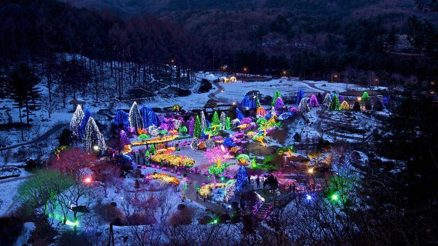 「アチムゴヨ樹木園」韓国, 京畿道