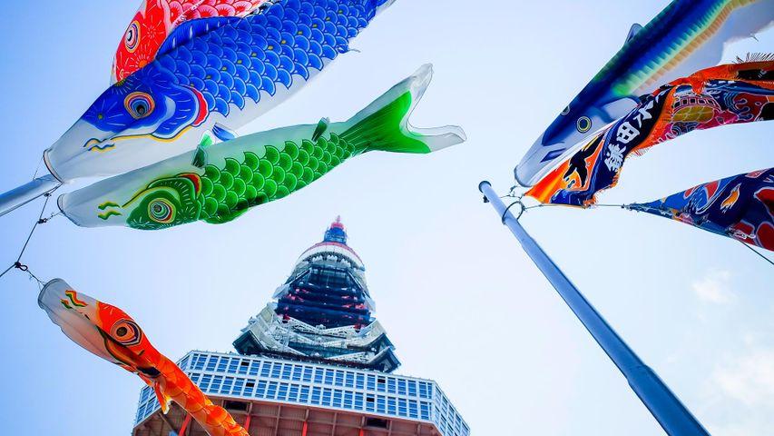 「こいのぼりと東京タワー」東京, 港区