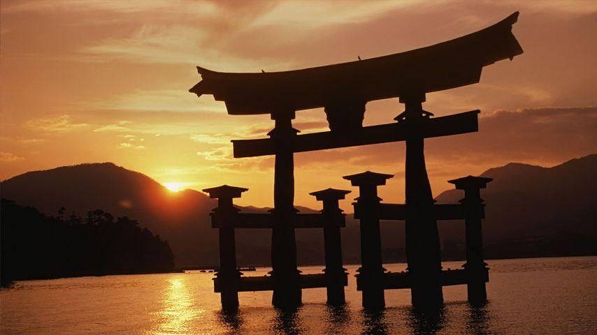 「厳島神社の日の出」広島, 宮島