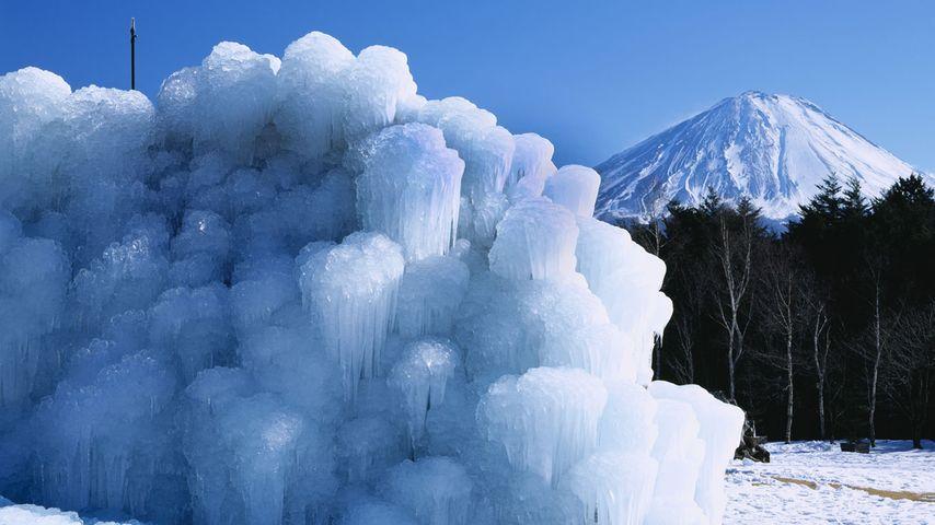 「西湖の樹氷」山梨,富士河口湖町