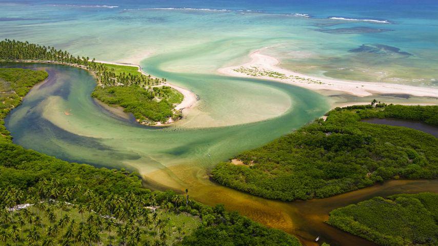 「タトアムニャ・ビーチ」ブラジル