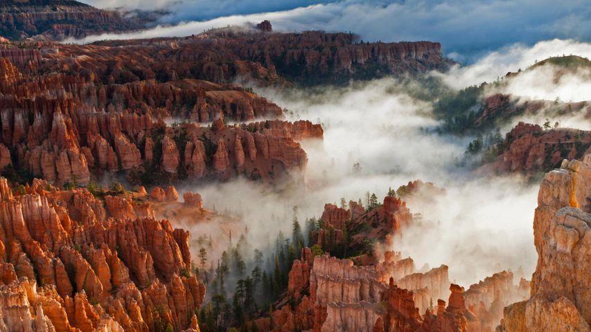 「霧に覆われるブライスキャニオン」米国ユタ州