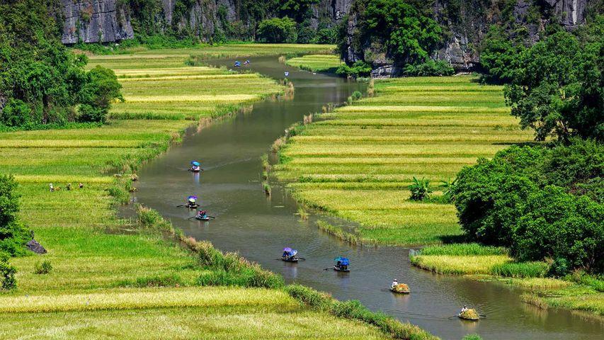 「チャンアンの水田を行くボートツアー」ベトナム