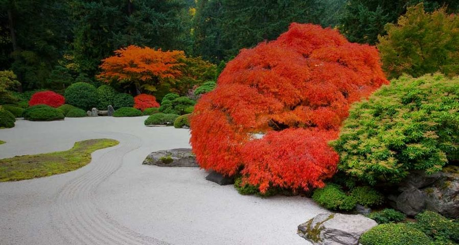 「ポートランド日本庭園の平庭」アメリカ, オレゴン州