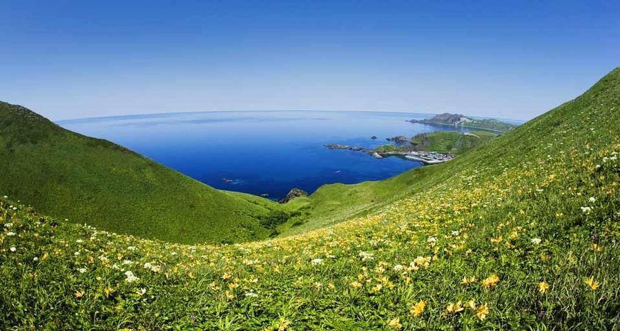 「澄海岬」北海道, 礼文島