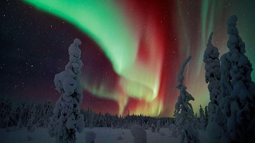 「オーロラ」フィンランド, ラップランド