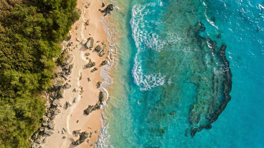「マーリー・ビーチ」バミューダ諸島
