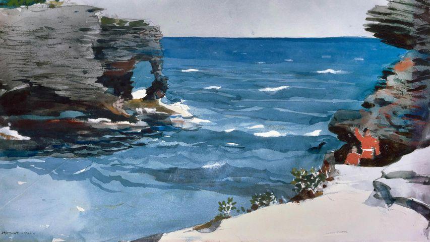 「バミューダ諸島の岩石海岸」ウィンスロー・ホーマー, ボストン美術館