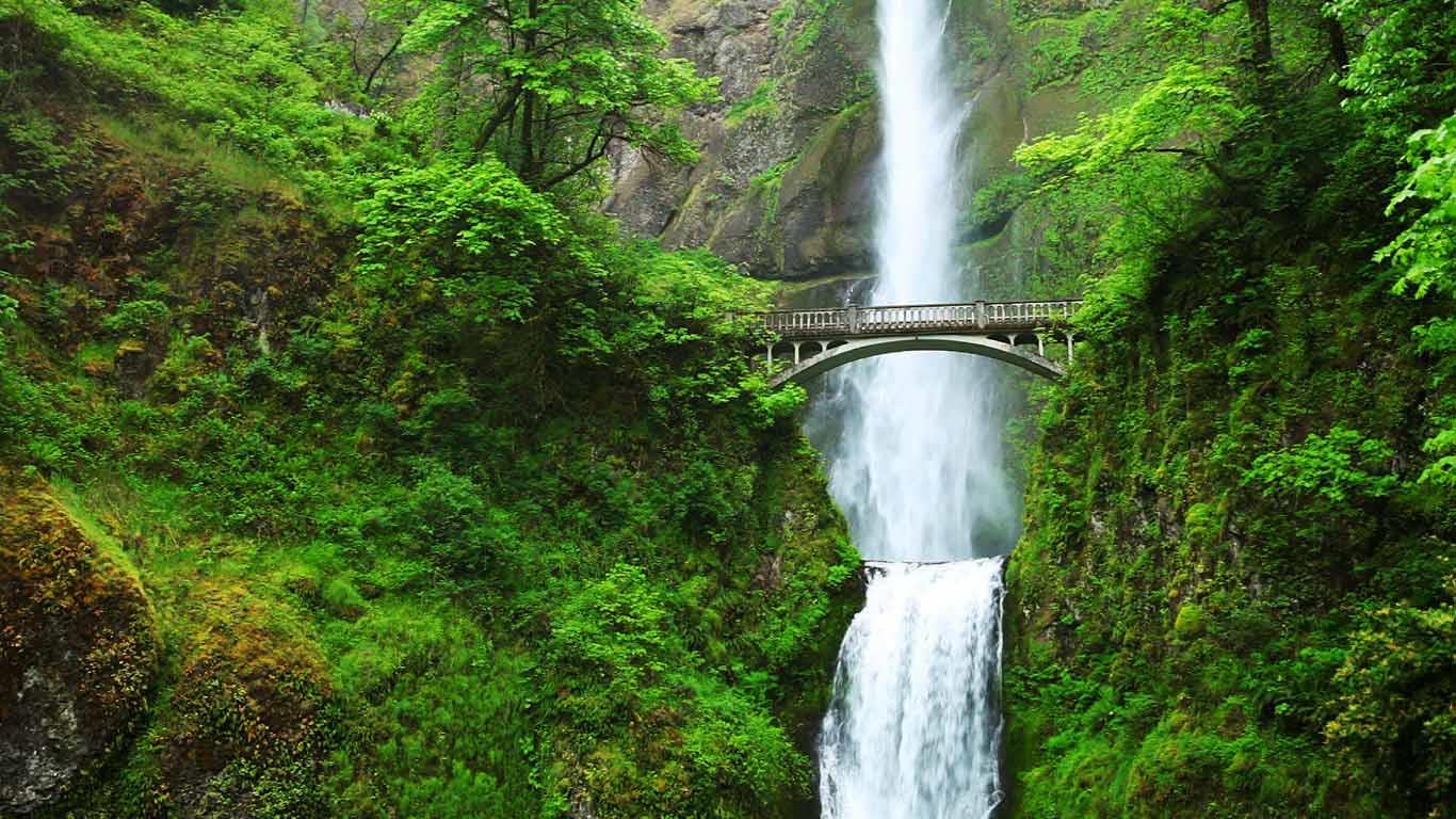 都市森林_「マルトノマ滝」アメリカ, オレゴン州 ・ Bing日替わり画像