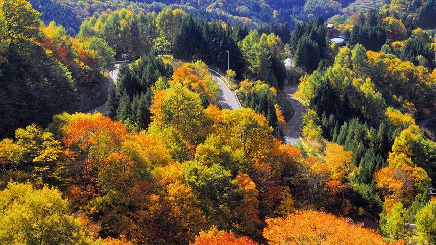 「秋の峠」長野