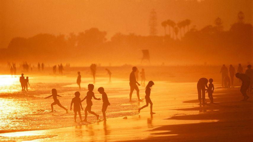 「コロナドの浜辺」アメリカ, カリフォルニア州