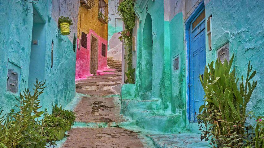 「旧市街のカラフルな路地」モロッコ, テトゥアン