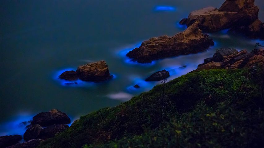 「藍眼涙」台湾, 馬祖島