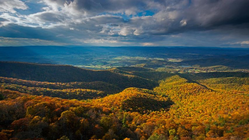 「シェナンドー国立公園」米国バージニア州, ブルーリッジ山脈