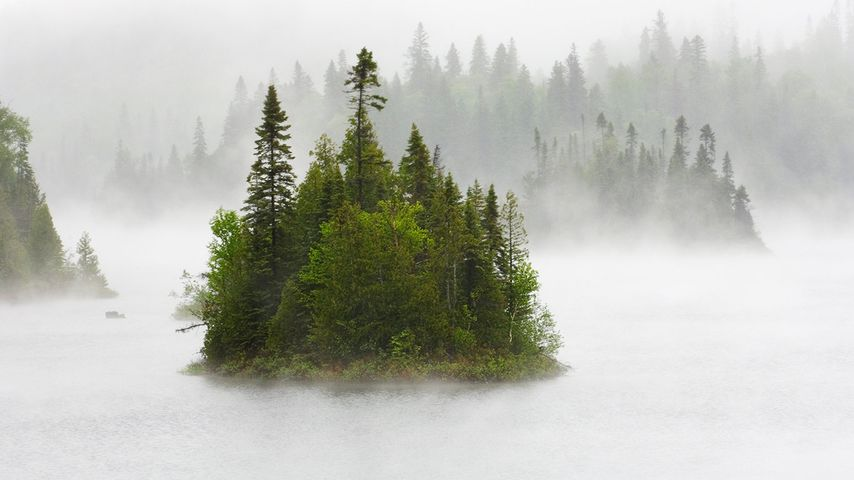 「霧のフェントン湖」カナダ, オンタリオ州