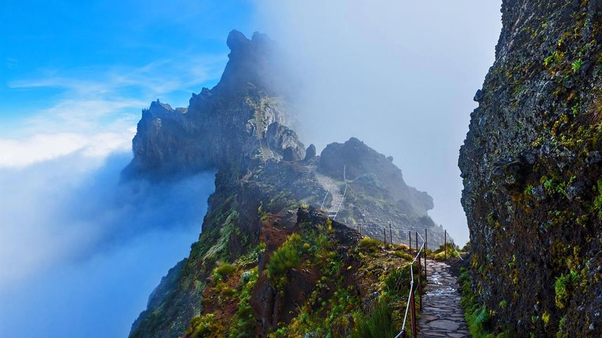 「雲の上の山道」ポルトガル, マデイラ諸島