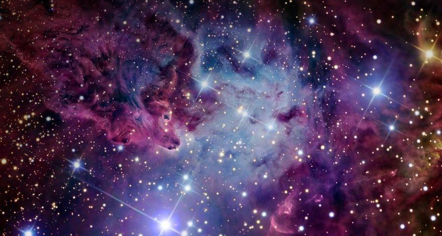 「狐の毛皮星雲」いっかくじゅう座