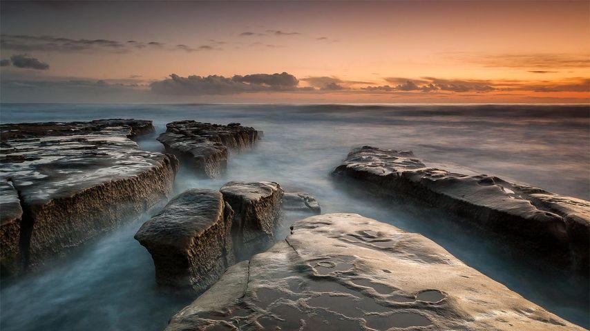 「ラ・ホヤの引き潮」アメリカ, カリフォルニア州