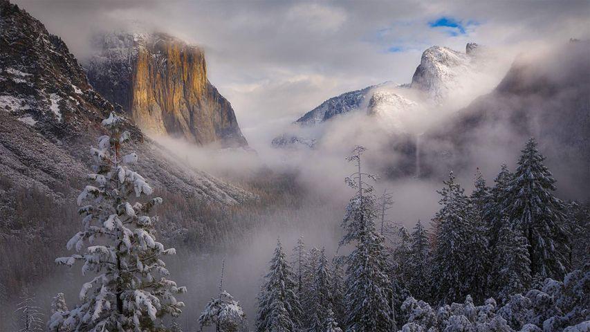 「ヨセミテ国立公園」米国, カリフォルニア州