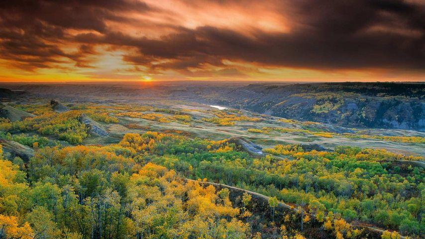 「ドライ・アイランド・バッファロー・ジャンプ州立公園」カナダ, アルバータ州