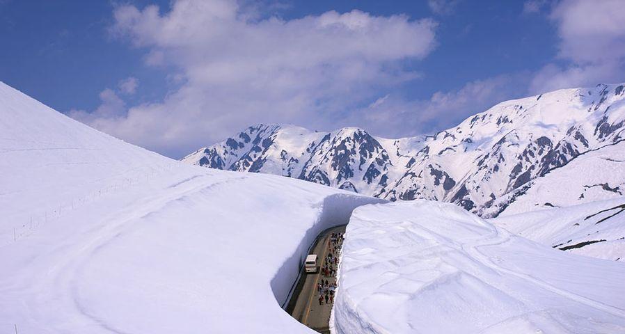 「雪の大谷」富山, 立山