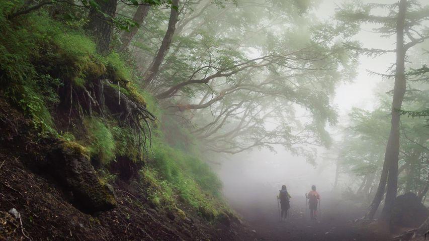 「吉田口登山道」富士山
