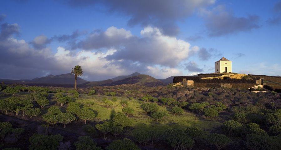 「ランサローテ島」スペイン, カナリア諸島