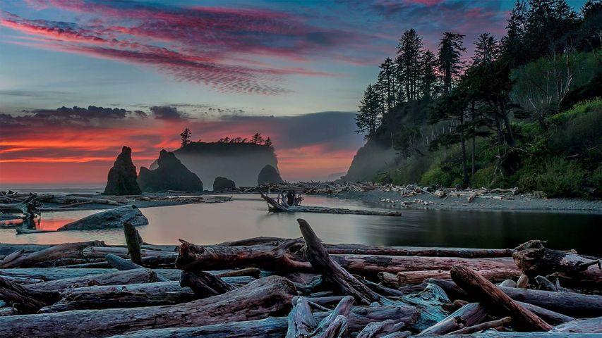 「ルビービーチの夕暮れ」米国ワシントン州, オリンピック国立公園