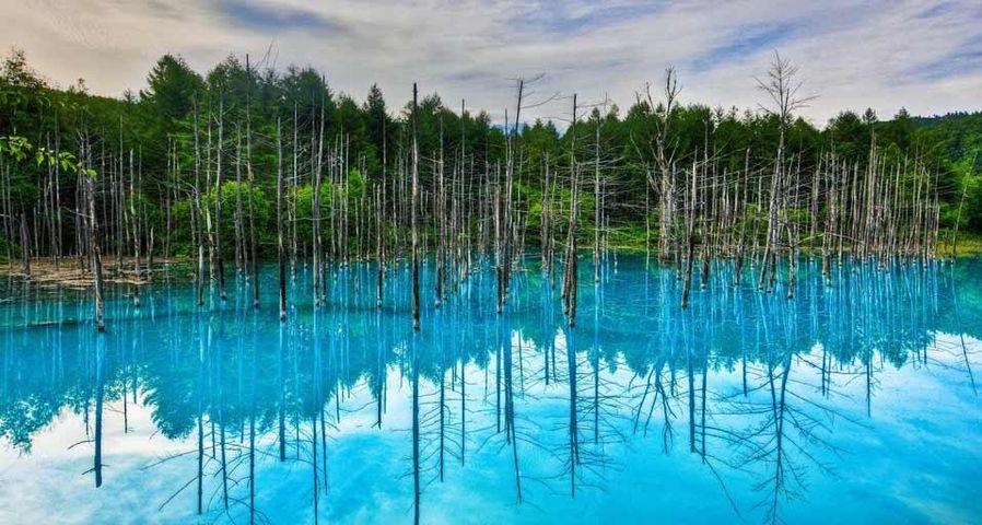 「青い池」北海道, 白金温泉