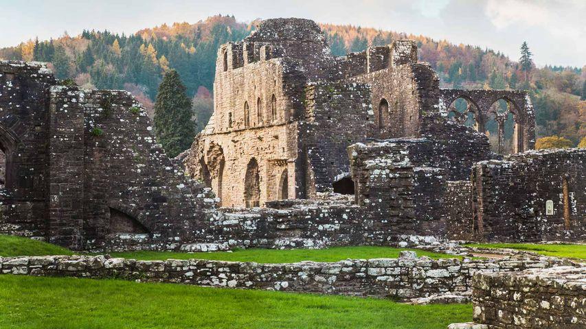 「ティンターン修道院」イギリス, ウェールズ
