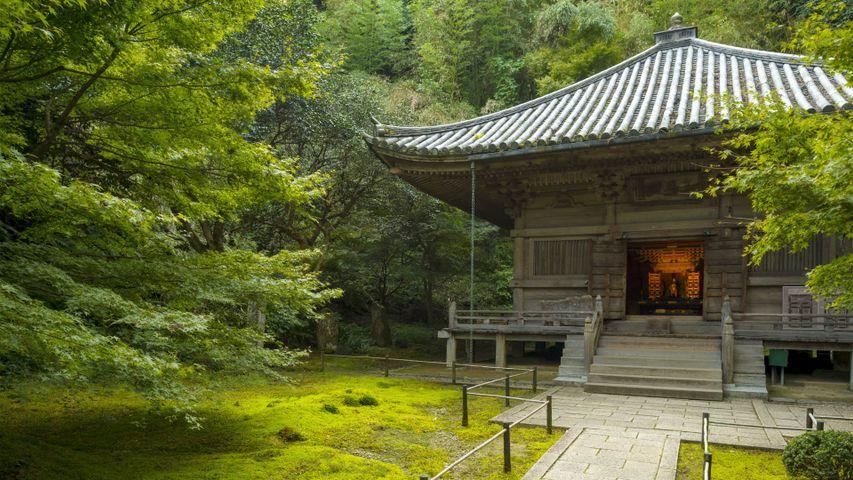 「円通院の三慧殿」宮城県, 松島町