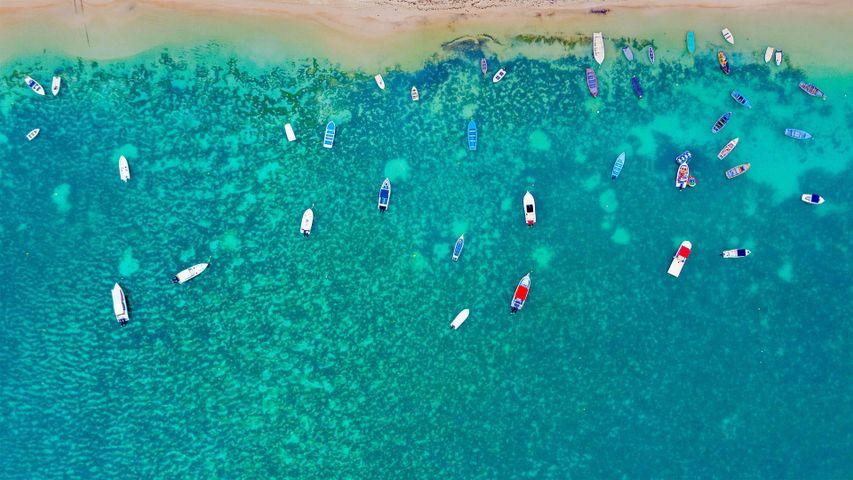 「モンショワジーのビーチ」モーリシャス