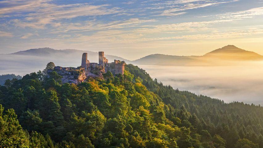 「アルトダーン城」ドイツ, ラインラント=プファルツ州