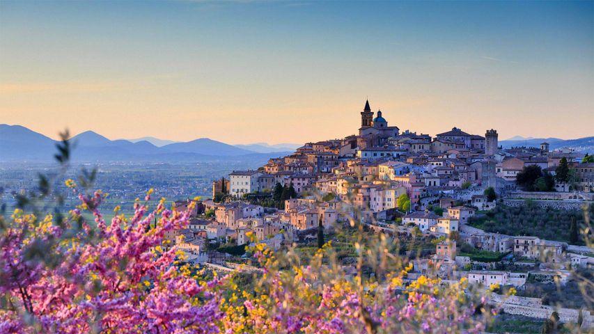 「トレヴィの街」イタリア, ウンブリア州