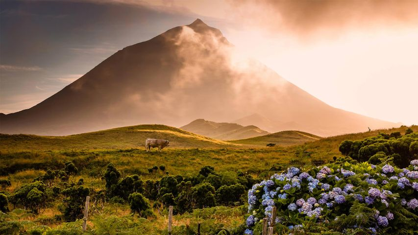 「ピコ山」アゾレス諸島