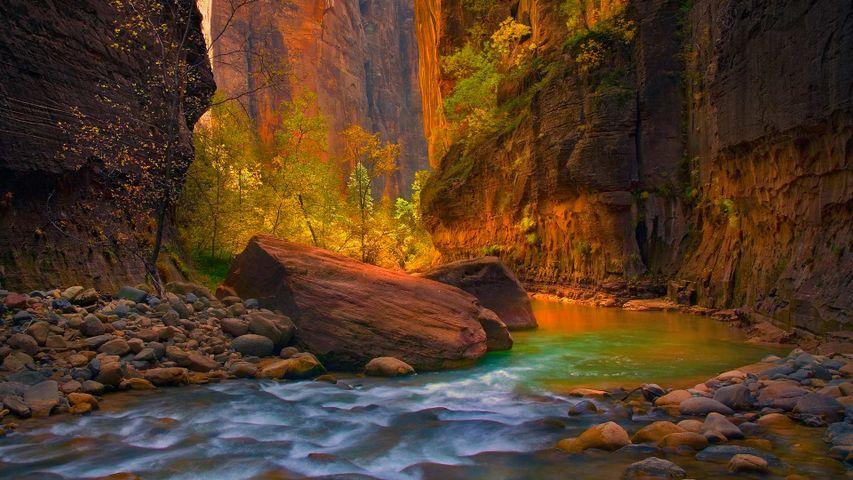 「バージン川」アメリカ, ユタ州